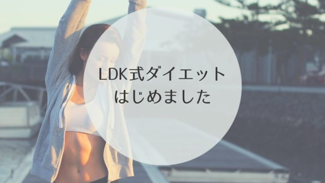 LDK ダイエット グッズ