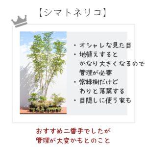 シンボルツリー おすすめ